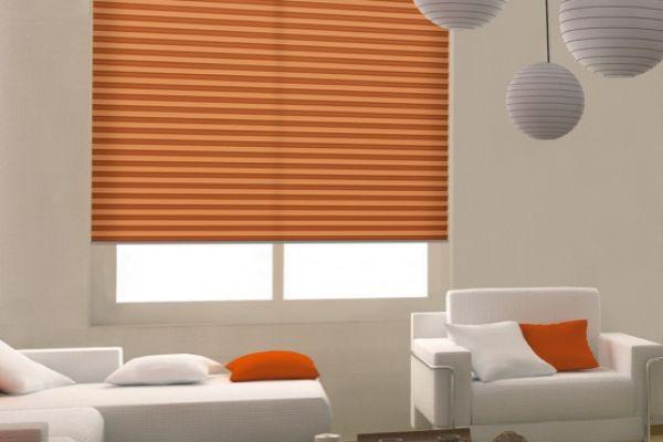 plise-dekorativa-0787B9A39B-C994-6547-480D-421EFA921152.jpg